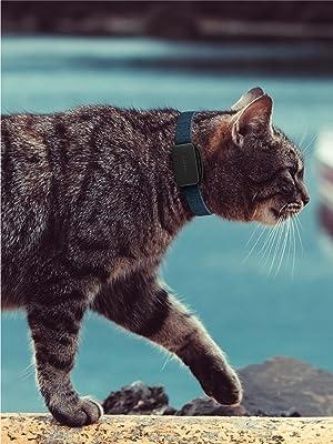 Invoxia Pet Tracker, rastreador GPS perros, localizador GPS gatos, Collar GPS mascotas,