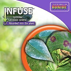 bonide infuse fungicide