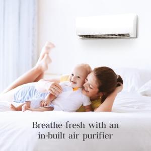 Air Purifier, AC