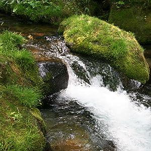 天然水 水 2L ナチュラル ミネラルウォーター