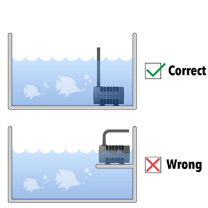 Correctamp;Wrong Application