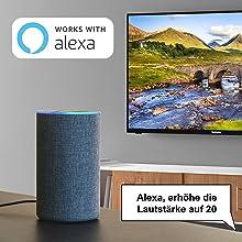 Werkt met Alexa