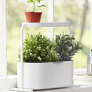 Jardinière, pot, porte plante, suspension, decoration murale, plante