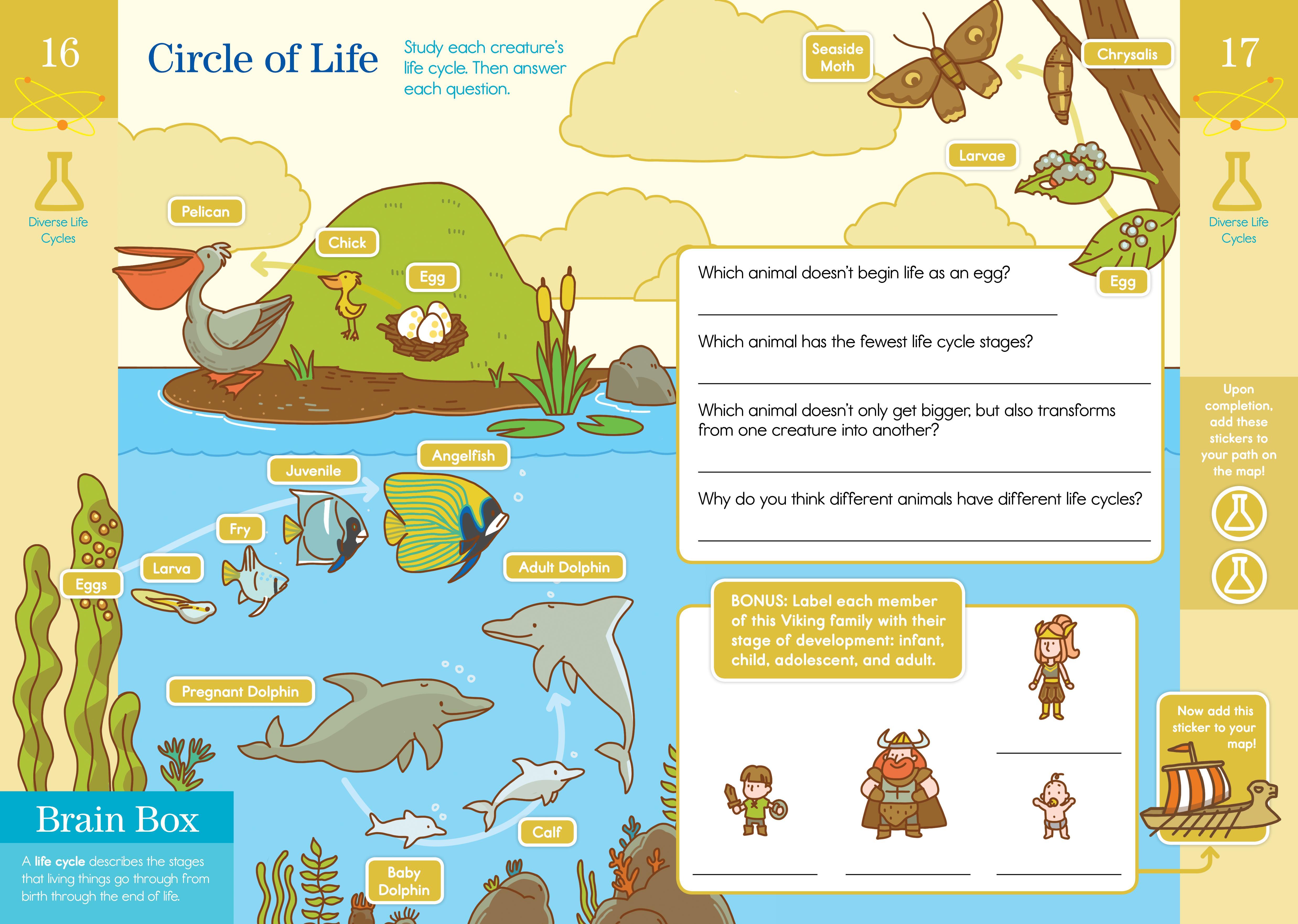Amazon.com: Summer Brain Quest: Between Grades 3 & 4 (9780761189190 ...
