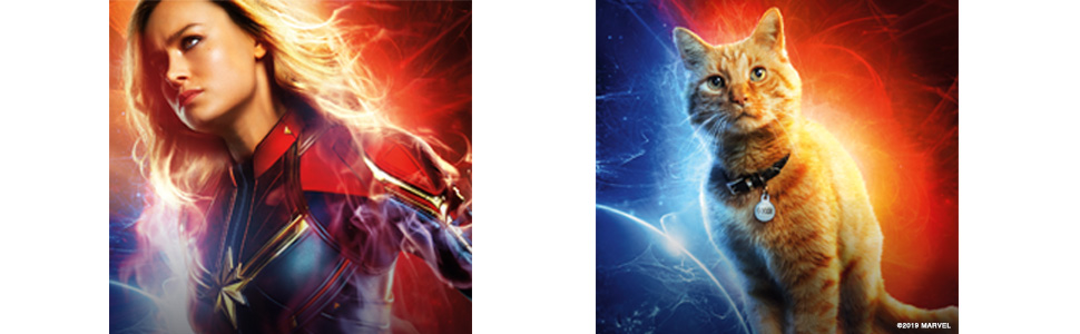 marvel dvd; captain marvel; marvel blu-ray