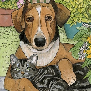 Amazon.com: Creative Haven Lovable Cats and Dogs Coloring