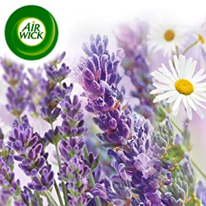 Room air freshener freshner plug ins plugins freshmatic dispenser refills air wick airwick lavender