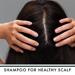 Shampoo for Healthy Scalp!