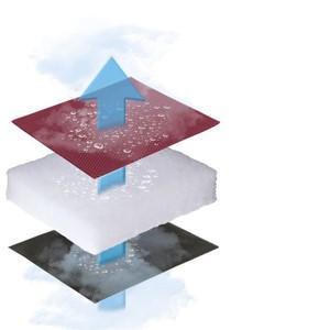 Lafuma Tumbona, Plegable y ajustable, Transabed, Air Comfort, Color: Acero, LFM2853-6135