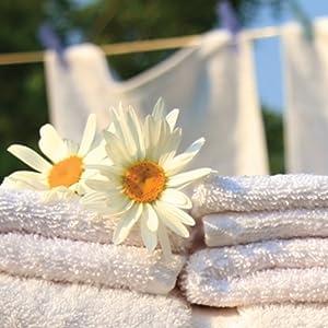 Cleenz Fabric Conditioner Softener Liquid, 1 L