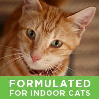 Amazon Com Purina One Indoor Advantage Adult Dry Cat