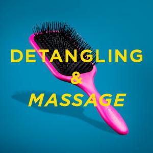 Denman Detangling & Massage
