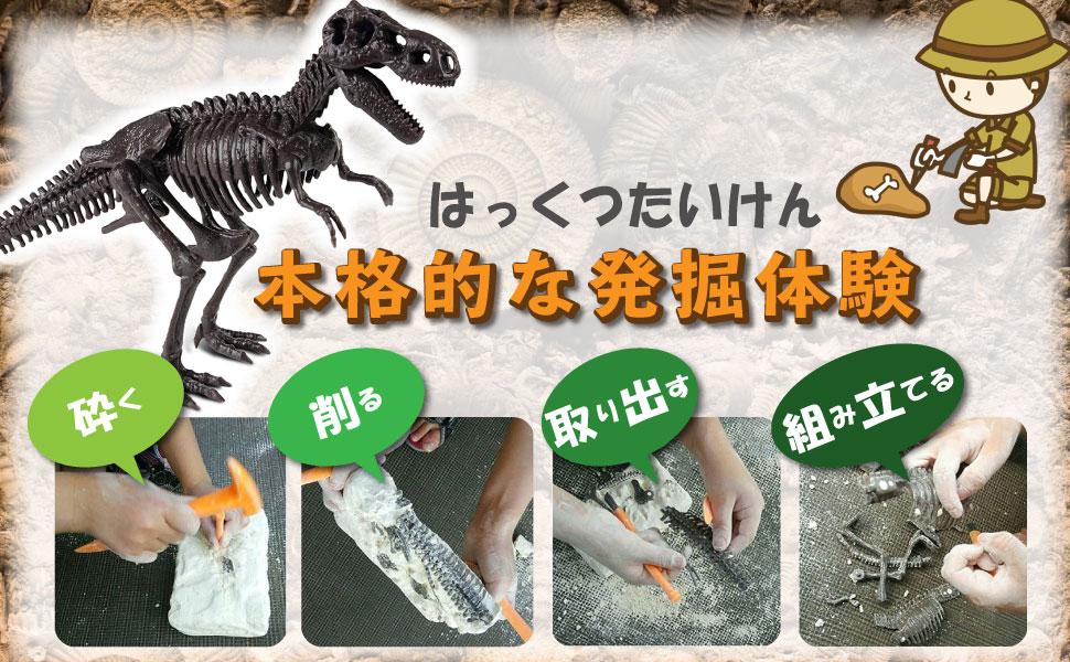 発掘キット ティラノサウルス