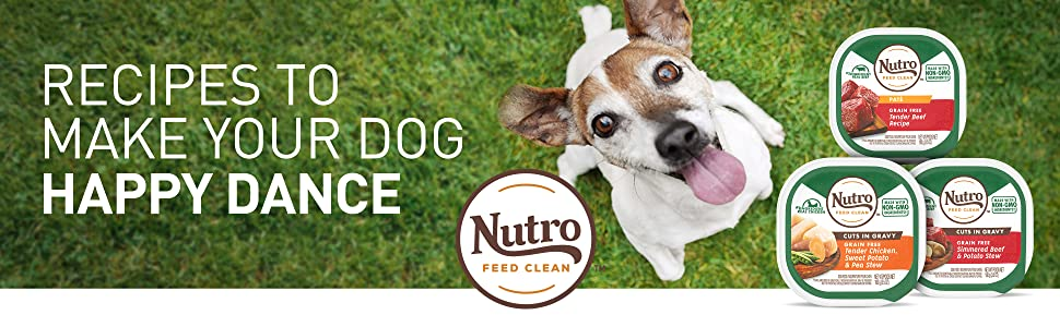 Nutro, Feed Clean, Recipes to make your dog happy dance, grain free dog food, zero grain dog food