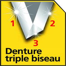 DENTURE TRIPLE BISEAU