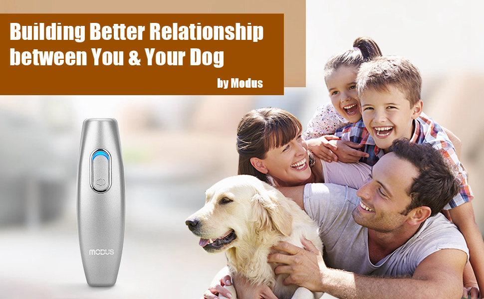 anti barking device