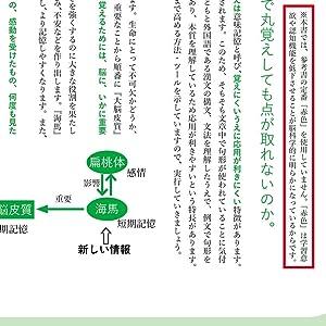 参考書,脳科学,漢文,脳TEC漢文