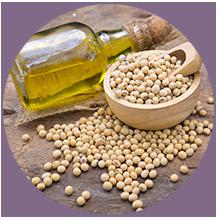 Soybean Biolipids