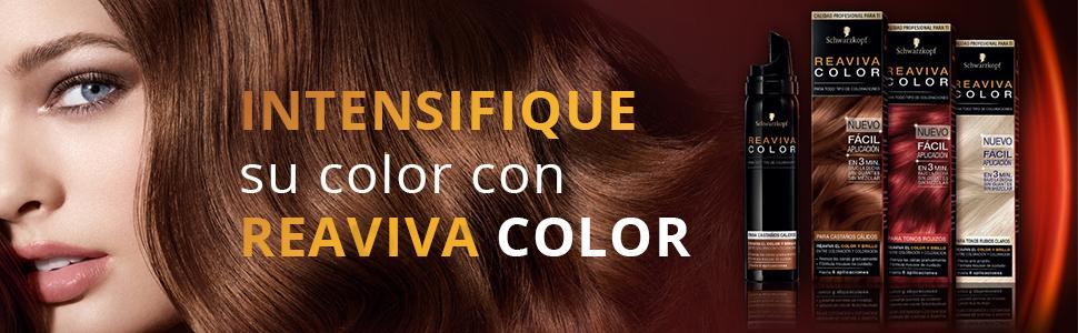 Reaviva Color de Schwarzkopf - Castaño Cálido - 2 uds de 75ml
