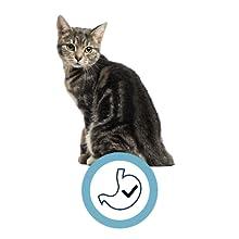 ADVANCE Veterinary Diets - Gastroenteric Sensitive Pienso ...