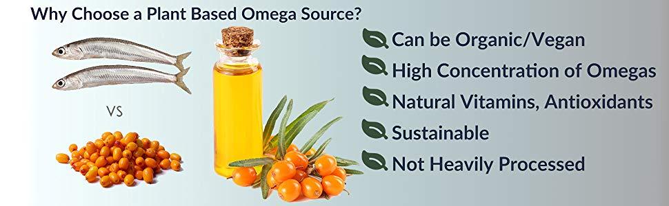 Omega 3, Fatty Acids, Sibu, Fish Oil, Nordic Naturals, Vegan, Non-GMO, Organic, Sea Buckthorn