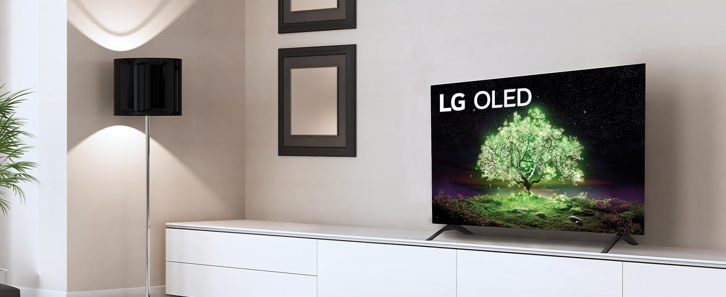 LG OLED A1 steht im hellen Wohnzimmer
