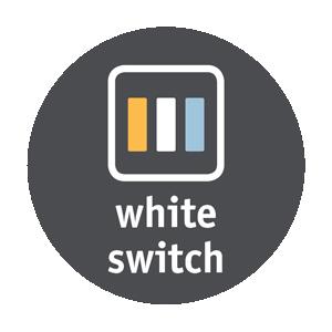 Interrupteur blanc.