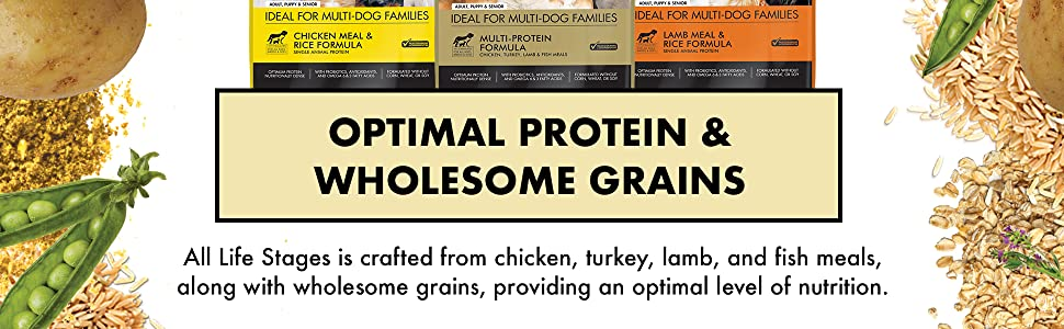 protein dog food, grain dog food