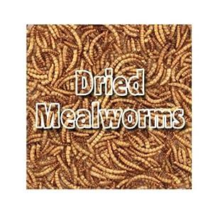 Dried Mealowrms