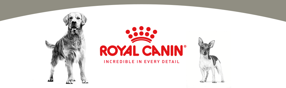 ROYAL CANIN INCREDIBLE IN EVERY DETAIL Dog Banner