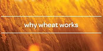 Why Wheat Works for Cat Litter