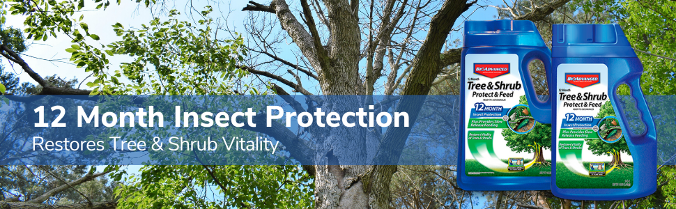 12 month tree and shrub protection