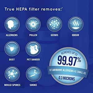HoMedics Purificador de aire Filtro HEPA con carbón activo ...