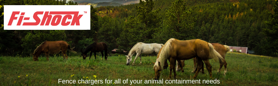 electric fencing, fi-shock, energizer, charger, fence charger, horses, cattle, bison, goats, pigs,