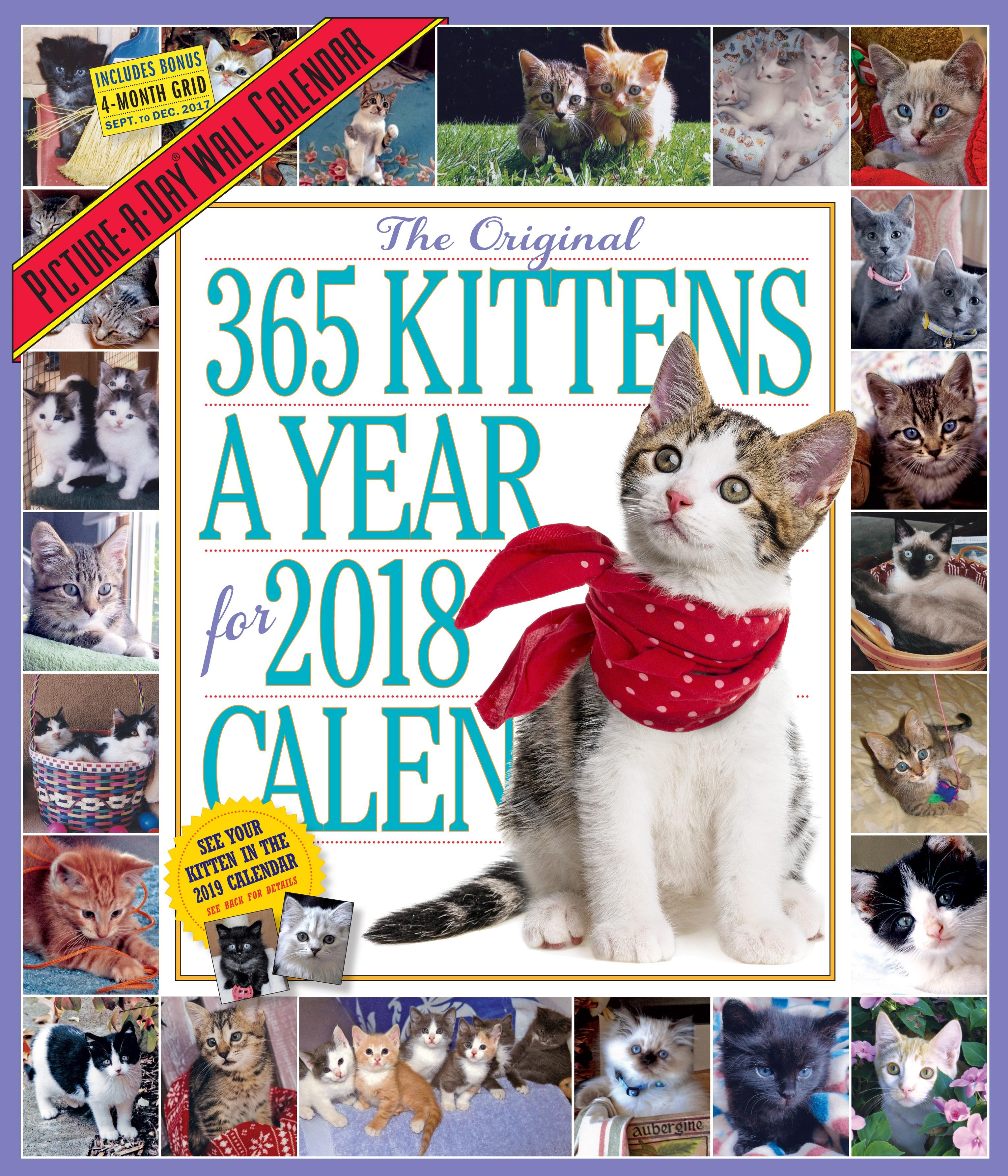 The 365 Kittens A Year Picture A Day Wall Calendar 2018 Workman Publishing 9780761193852