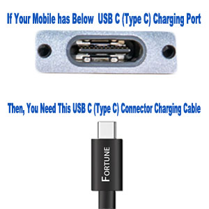 Type C charging port and charging connector