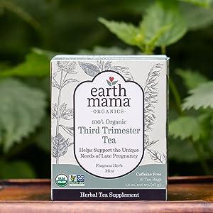 herbal tea, childbirth, labor prep, uterine tonic, stinging nettles, oatstraw, red raspberry leaf
