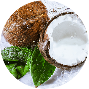 Refreshing Coconut