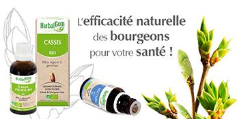 gemmothérapie, complexe, macérat, herbalgem, bourgeon de plantes frais et bio