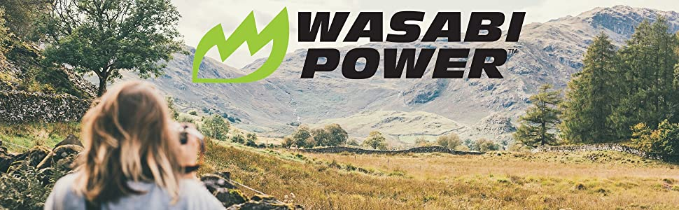 Wasabi Power Logo.Photo by Joseph Pearson on Unsplash