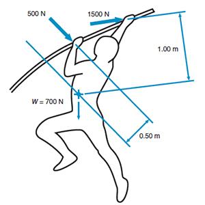 biometric, pole-vaulter