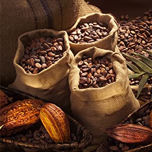 Feinster Kakao