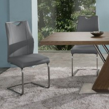 dining chairs,dining room chairs,contemporary,dining chair,chair,accent chair,chairs,armchair,chairs