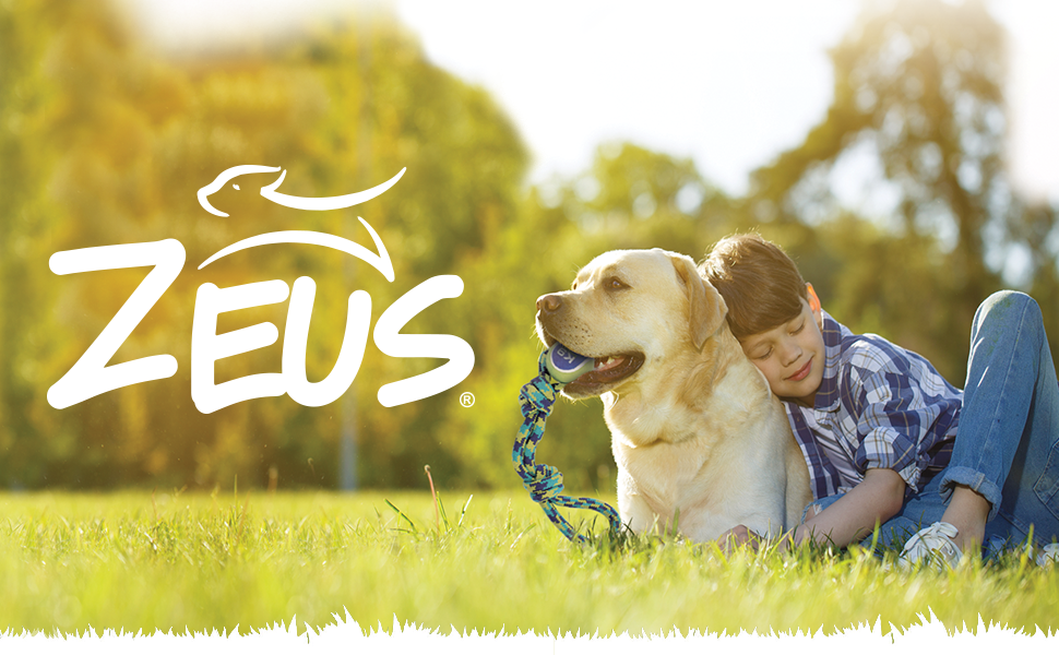 Zeus logo with kid hugging yellow lab holding a Zeus rope toy in its mouth.