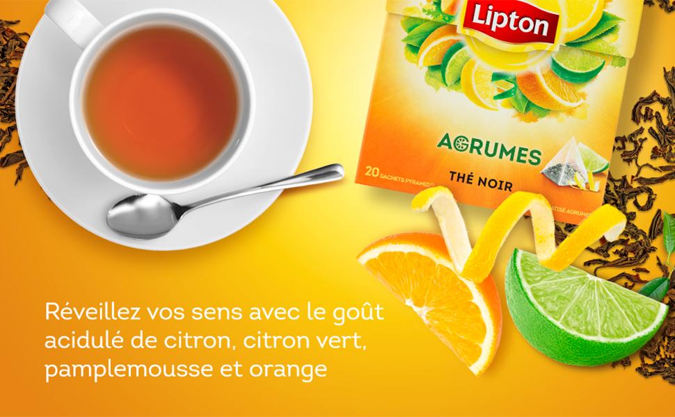 Réveillez vos sens avec le goût acidulé de citron, citron vert, pamplemousse et orange, thé sachets