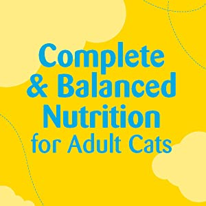 Complete and Balanced Nutrition for Adult Cats, Temptations Treats for Cats, Feline, Snacks, Kitty