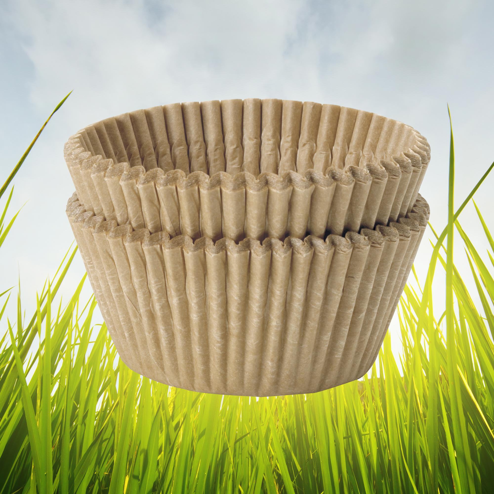 ce1503cd 86f2 4a0f 8608 ac020cae6205  Cone Coffee Filters Coffee Filters If You Care