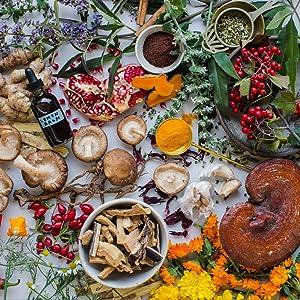 herbalism herbs ayurveda ayurvedic holistic