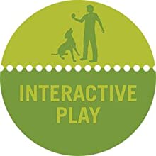 interctive play