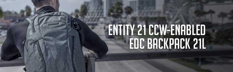 Entity 21